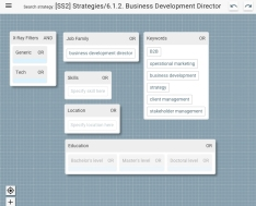 27 strategy_BusinessDevDirector