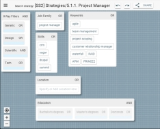 29 strategy_ProjectManager